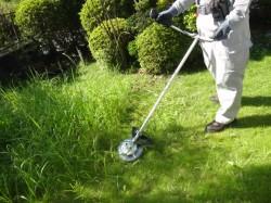 空家管理 草刈り中