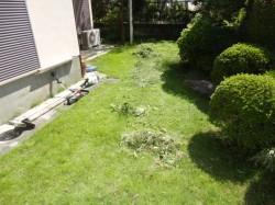 空家管理 草刈り2