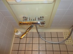 TOTO製シャワー水栓TMGG40E